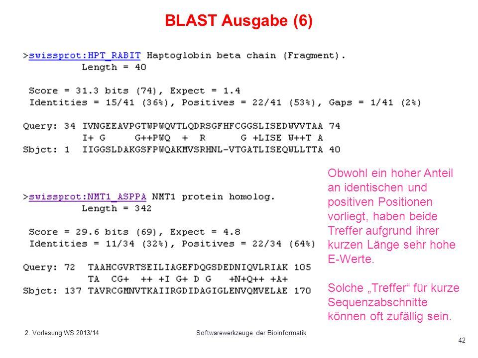 Softwarewerkzeuge der Bioinformatik 42 BLAST Ausgabe (6) Obwohl ein hoher Anteil an identischen und positiven Positionen vorliegt, haben beide Treffer