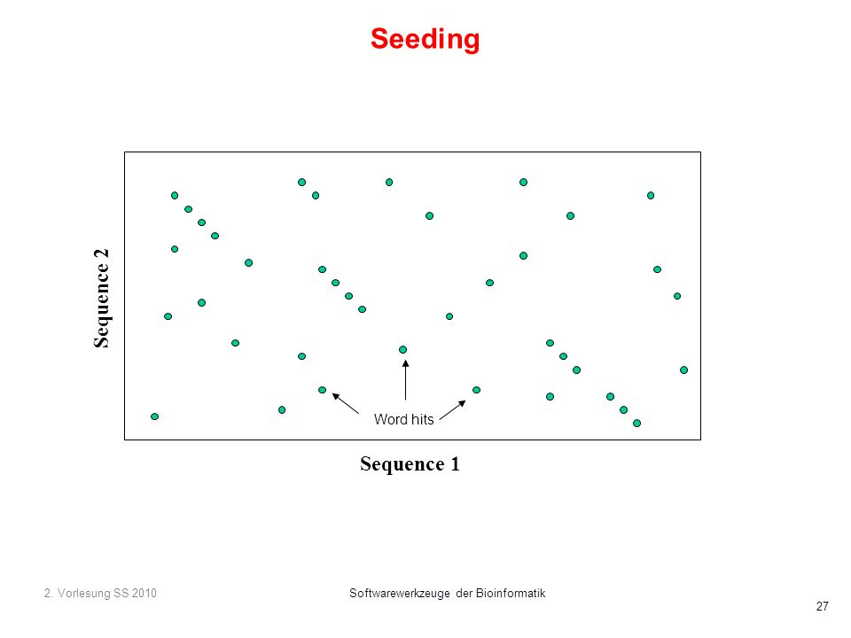 2. Vorlesung SS 2010Softwarewerkzeuge der Bioinformatik 27 Seeding Sequence 1 Sequence 2 Word hits