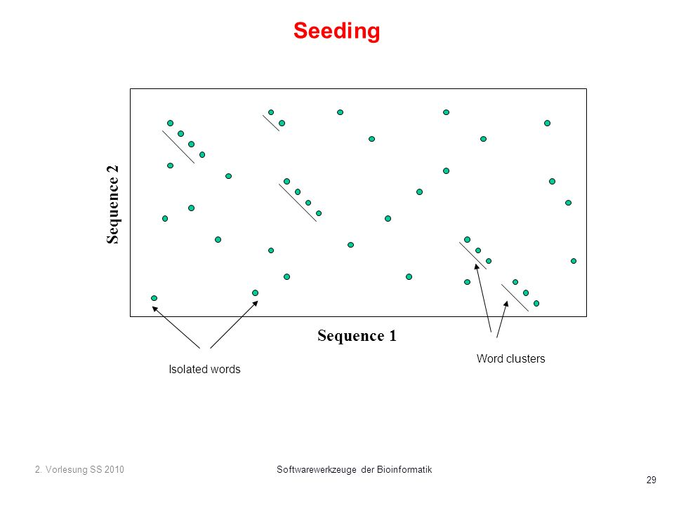 2. Vorlesung SS 2010Softwarewerkzeuge der Bioinformatik 29 Seeding Sequence 1 Sequence 2 Word clusters Isolated words