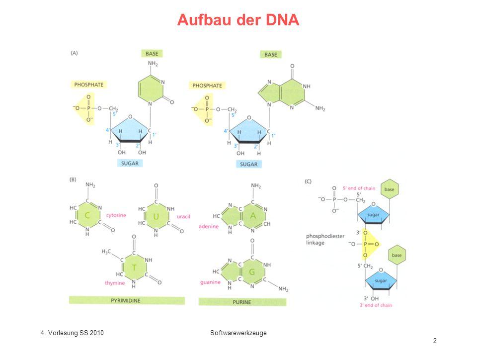 4. Vorlesung SS 2010Softwarewerkzeuge 2 Aufbau der DNA