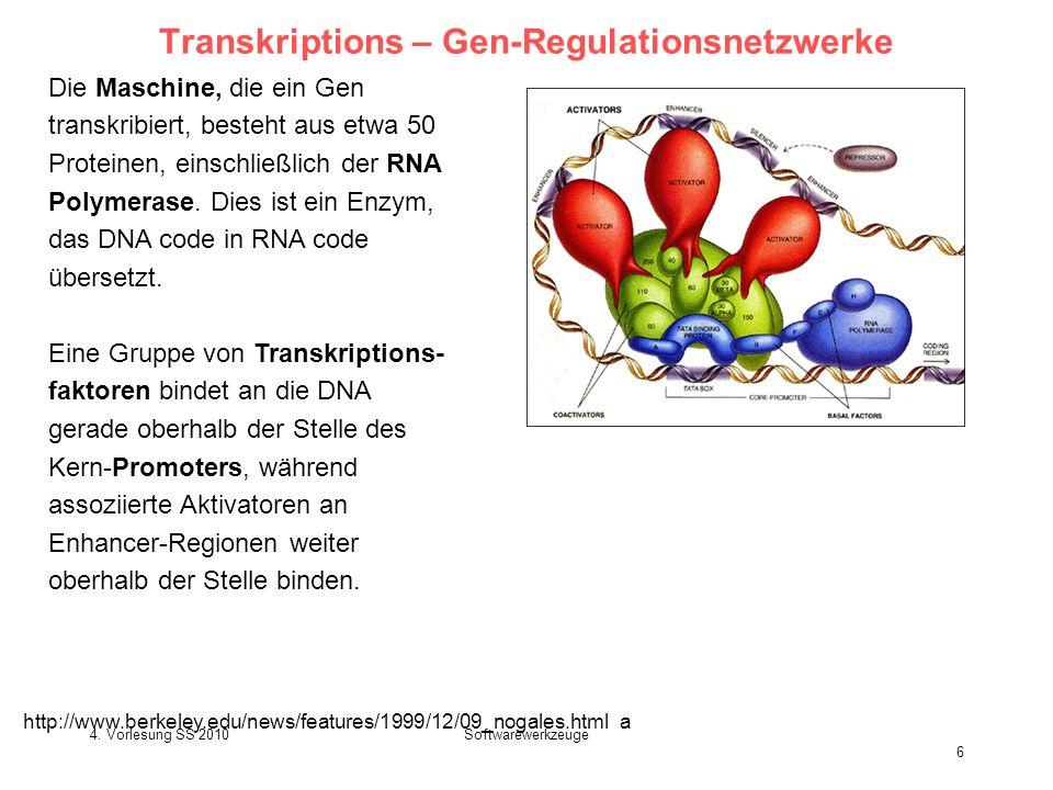 4. Vorlesung SS 2010Softwarewerkzeuge 6 Transkriptions – Gen-Regulationsnetzwerke Die Maschine, die ein Gen transkribiert, besteht aus etwa 50 Protein