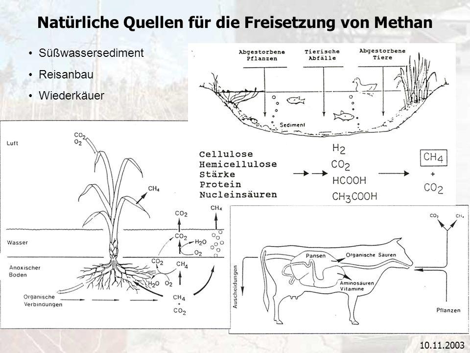 10.11.2003 Natürliche Quellen für die Freisetzung von Methan Süßwassersediment Reisanbau Wiederkäuer