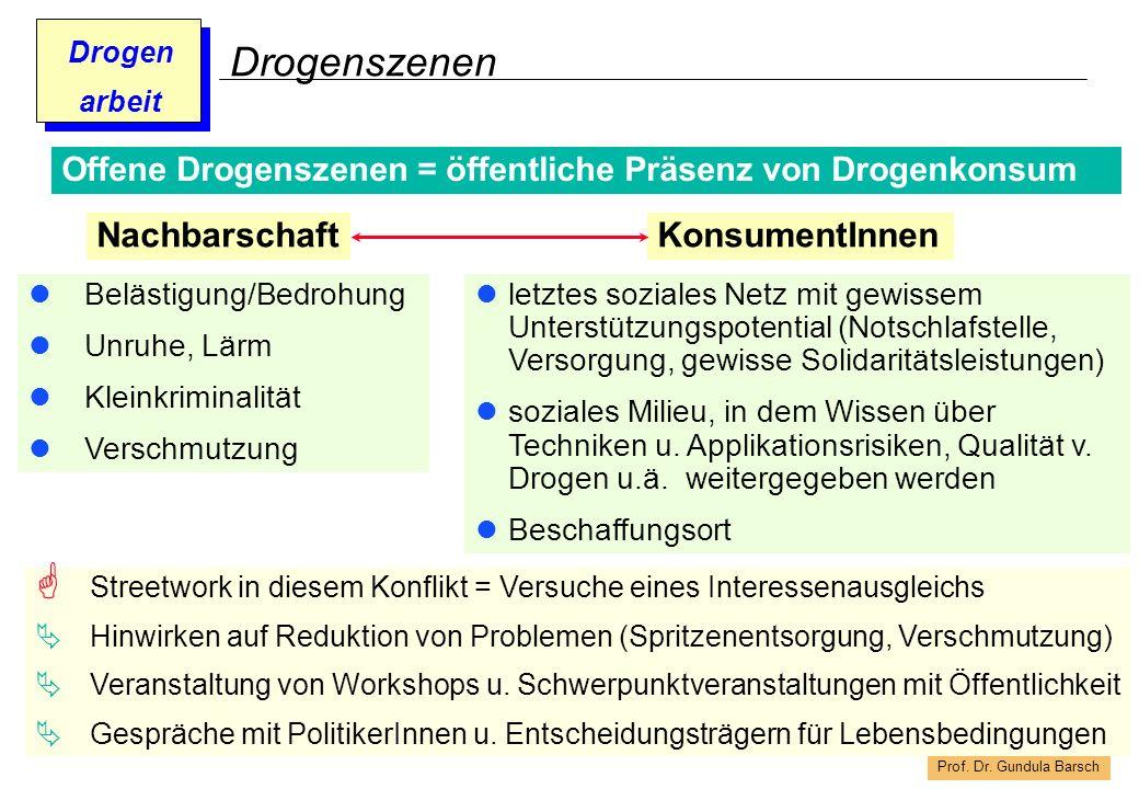 Prof. Dr. Gundula Barsch Drogen arbeit Drogenszenen Belästigung/Bedrohung Unruhe, Lärm Kleinkriminalität Verschmutzung Offene Drogenszenen = öffentlic