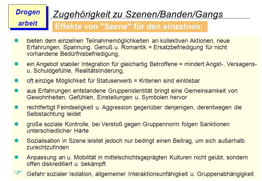 Prof. Dr. Gundula Barsch Drogen arbeit Zugehörigkeit zu Szenen/Banden/Gangs Effekte von