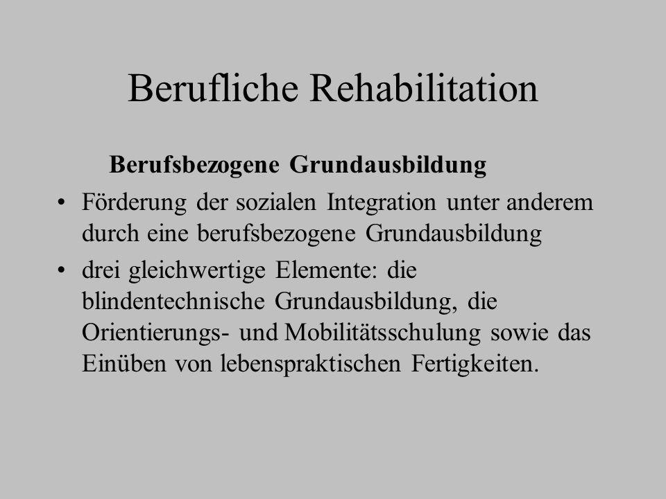 Berufliche Rehabilitation Berufsbezogene Grundausbildung Förderung der sozialen Integration unter anderem durch eine berufsbezogene Grundausbildung dr
