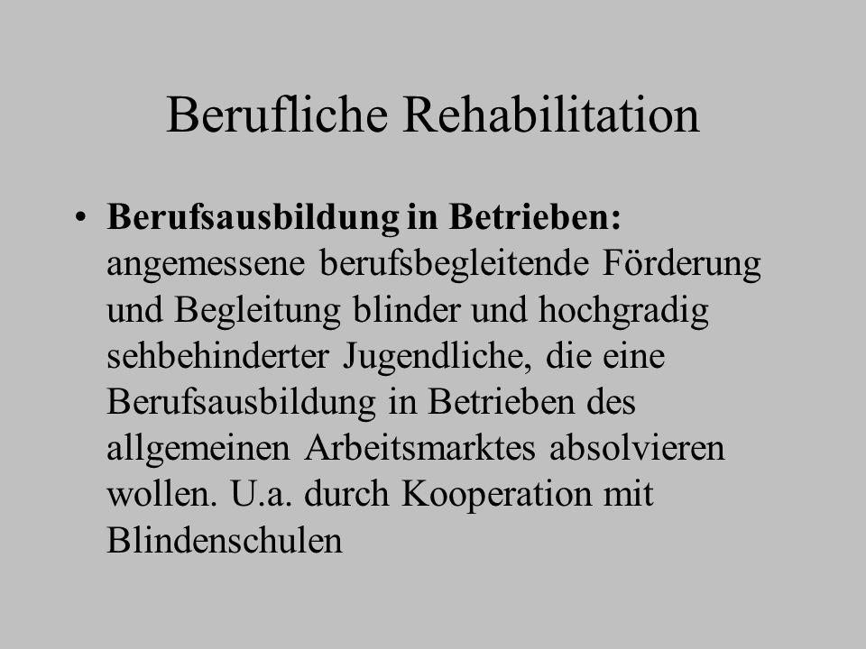 Berufliche Rehabilitation Berufsausbildung in Betrieben: angemessene berufsbegleitende Förderung und Begleitung blinder und hochgradig sehbehinderter