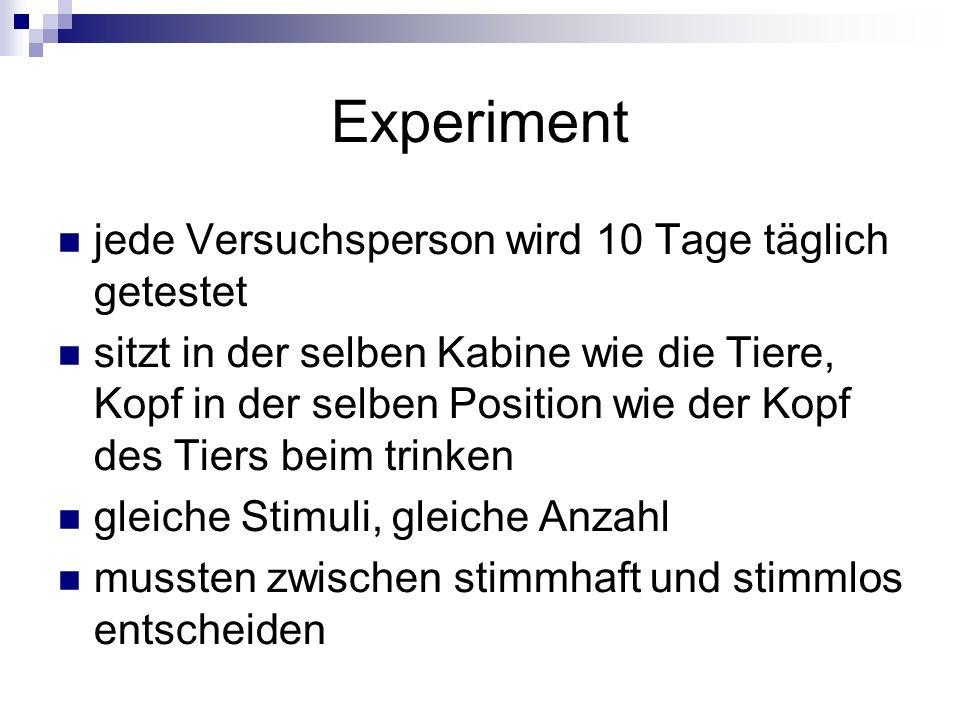 Experiment jede Versuchsperson wird 10 Tage täglich getestet sitzt in der selben Kabine wie die Tiere, Kopf in der selben Position wie der Kopf des Ti