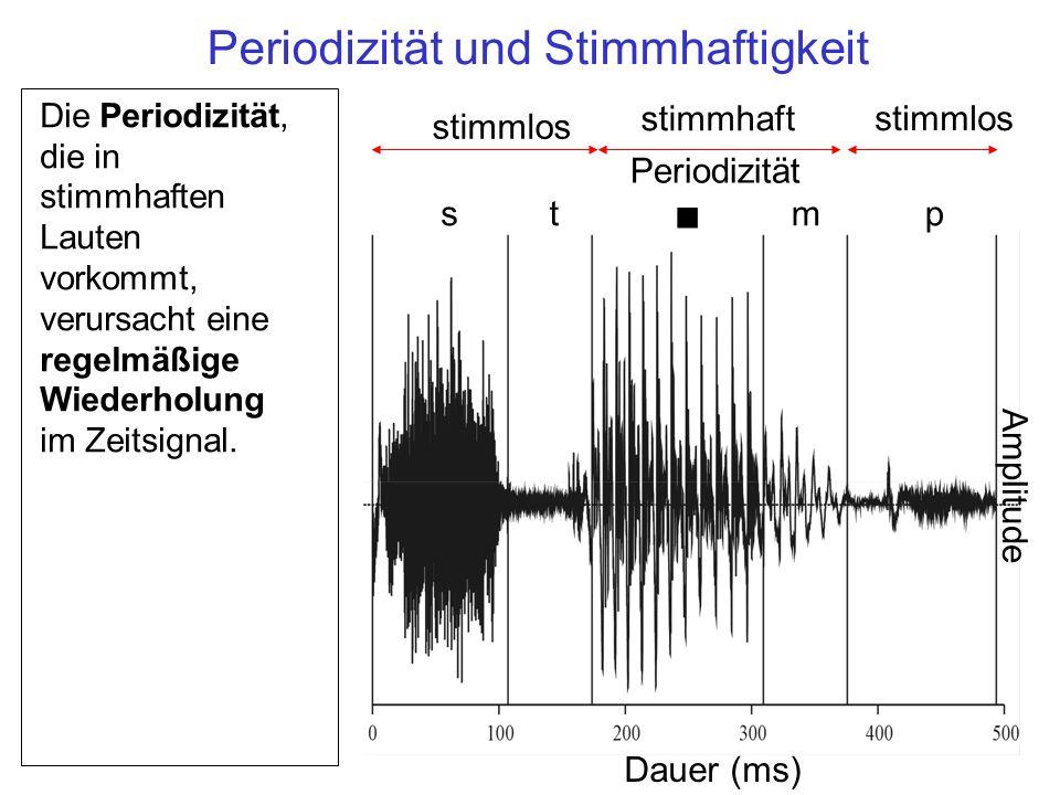 st n mp Periodizität Amplitude Dauer (ms) stimmlos stimmhaft stimmlos Die Periodizität, die in stimmhaften Lauten vorkommt, verursacht eine regelmäßige Wiederholung im Zeitsignal.