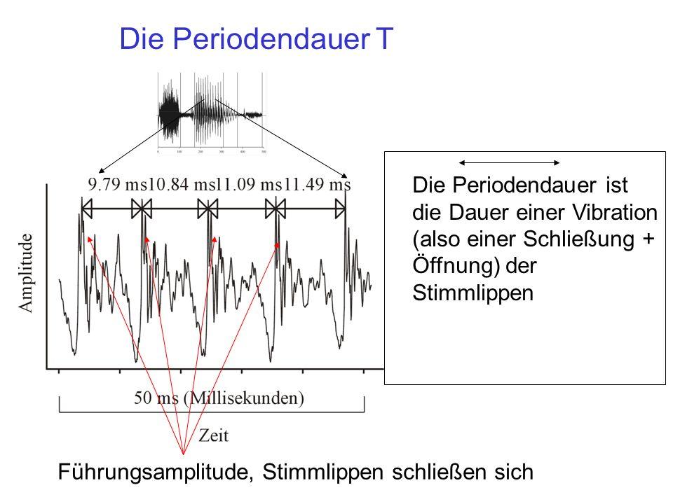 Die Periodendauer T Die Periodendauer ist die Dauer einer Vibration (also einer Schließung + Öffnung) der Stimmlippen Führungsamplitude, Stimmlippen schließen sich