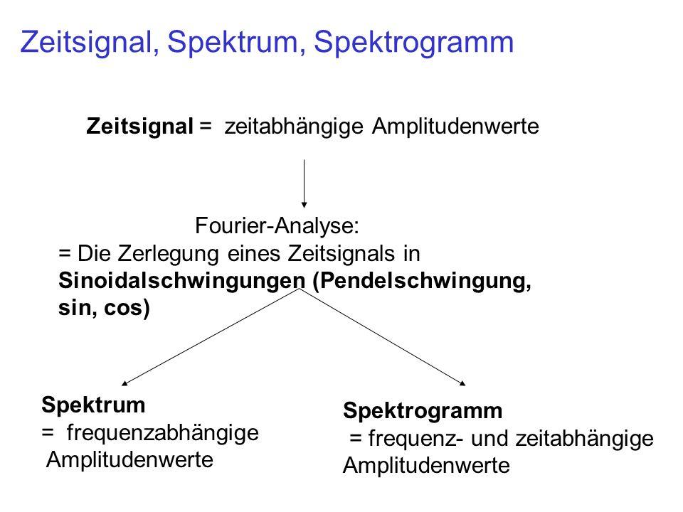 Zeitsignal, Spektrum, Spektrogramm Zeitsignal = zeitabhängige Amplitudenwerte Spektrum = frequenzabhängige Amplitudenwerte Spektrogramm = frequenz- und zeitabhängige Amplitudenwerte Fourier-Analyse: = Die Zerlegung eines Zeitsignals in Sinoidalschwingungen (Pendelschwingung, sin, cos)