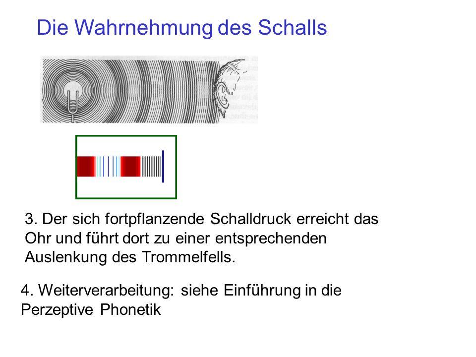 Die Wahrnehmung des Schalls 3.