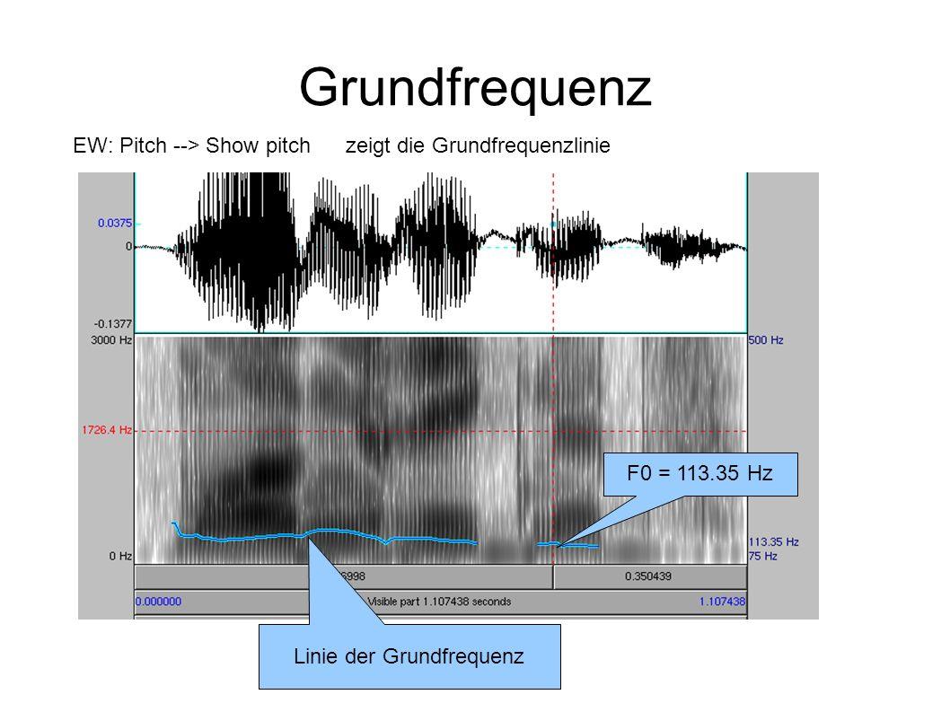 Grundfrequenz Linie der Grundfrequenz F0 = 113.35 Hz EW: Pitch --> Show pitchzeigt die Grundfrequenzlinie