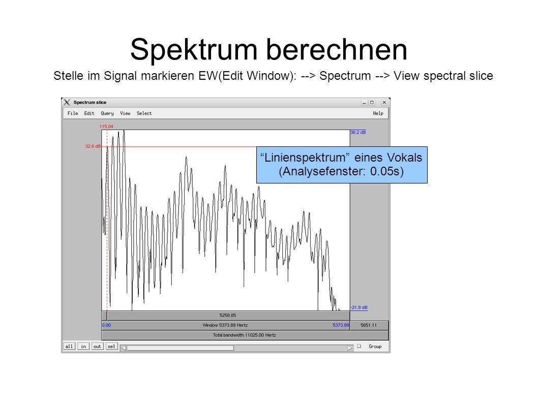 Spektrum berechnen Stelle im Signal markieren EW(Edit Window): --> Spectrum --> View spectral slice Linienspektrum eines Vokals (Analysefenster: 0.05s