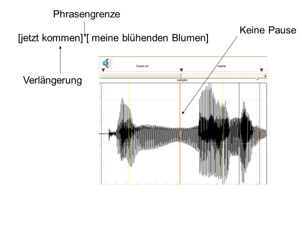 Prosodische Phrasen Längere Äußerungen werden vom Sprecher in prosodische Phrasen aufgeteilt, die oft (aber nicht unbedingt) mit syntaktischen Phrasen