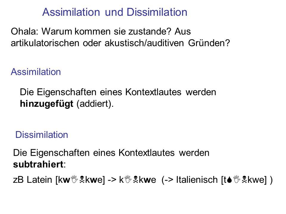 Assimilation und Dissimilation Assimilation Dissimilation Die Eigenschaften eines Kontextlautes werden subtrahiert: zB Latein [kwINkwe] -> kINkwe (->