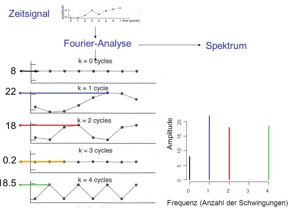 Zeitsignal Fourier-Analyse 8 22 18 0.2 18.5 01234 0 5 10 15 20 Frequenz (Anzahl der Schwingungen) Amplitude Spektrum