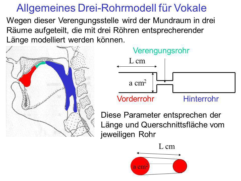 Allgemeines Drei-Rohrmodell für Vokale Wegen dieser Verengungsstelle wird der Mundraum in drei Räume aufgeteilt, die mit drei Röhren entsprecherender