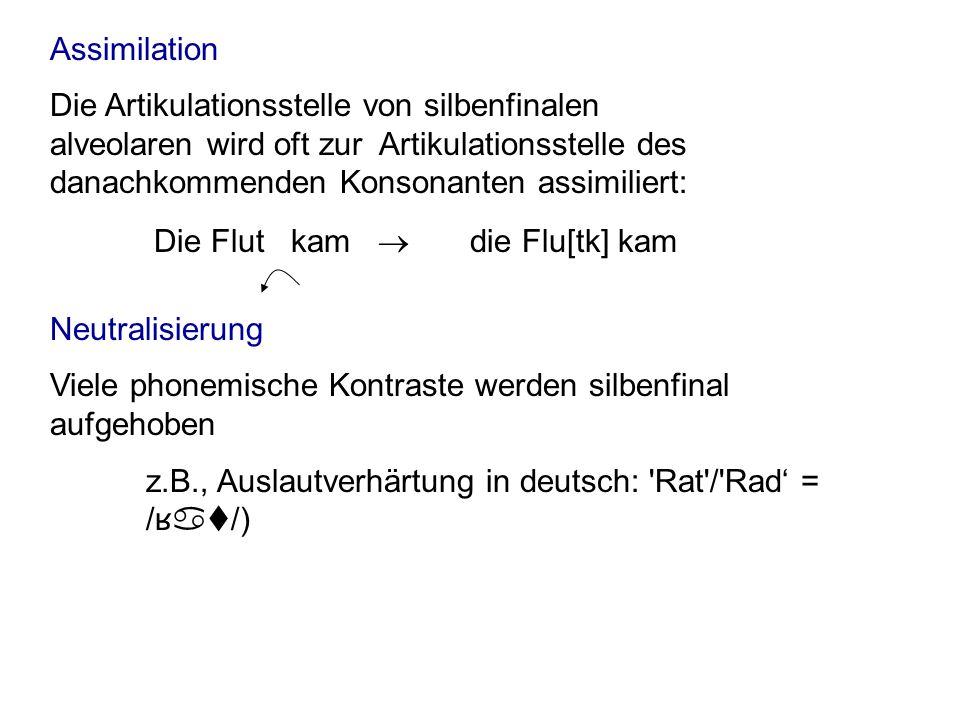 Assimilation Neutralisierung Viele phonemische Kontraste werden silbenfinal aufgehoben z.B., Auslautverhärtung in deutsch: 'Rat'/'Rad = / ʁ at/) Die F