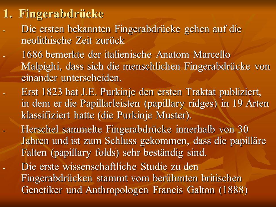 1. Fingerabdrücke - Die ersten bekannten Fingerabdrücke gehen auf die neolithische Zeit zurück - 1686 bemerkte der italienische Anatom Marcello Malpig