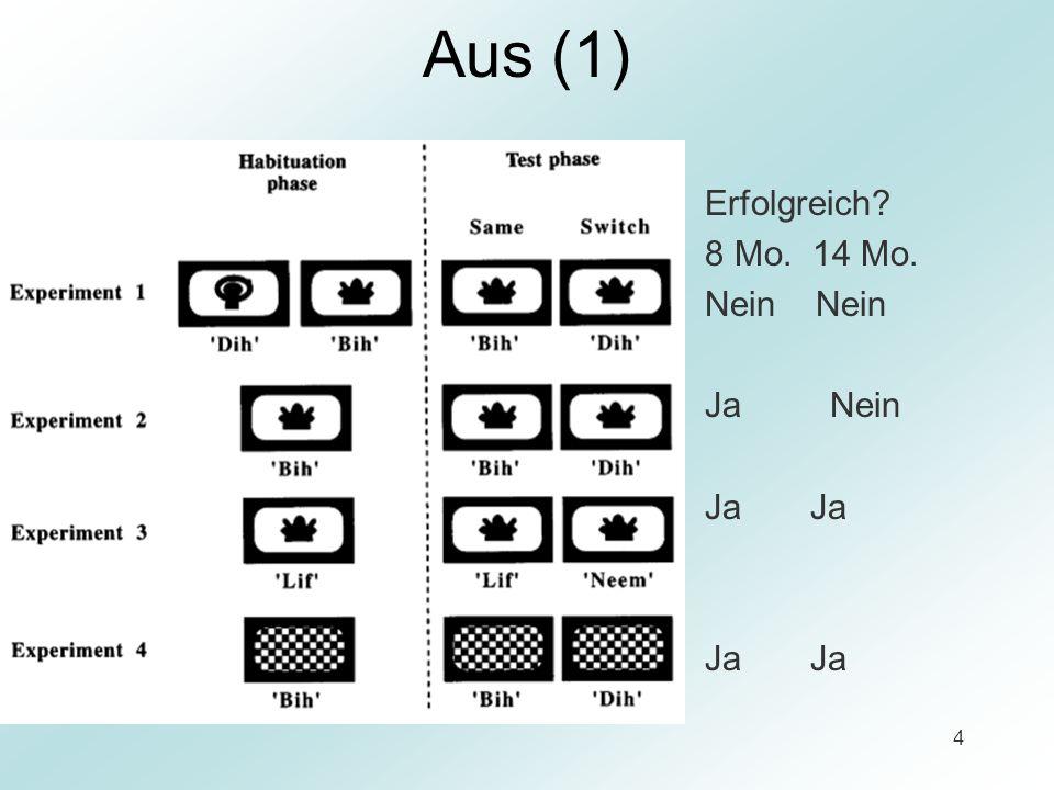 15 Diskussion Korrelation Vokabular - Fähigkeit Minimalpaare zu lernen Die Größe des Vokabulars ist eher ein Index für, als der Ursprung von relativer Fähigkeit neue, phonetisch ähnliche Wörter zu lernen.