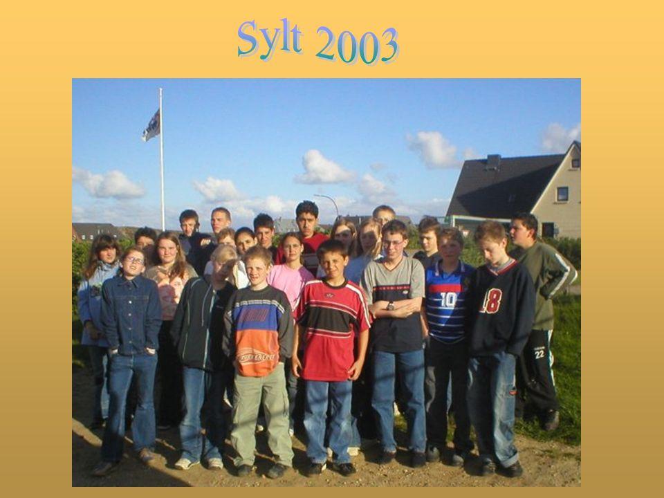 Wenn man die Insel Sylt per Bahn erreichen will, muss man über den Hindenburg-Damm fahren.