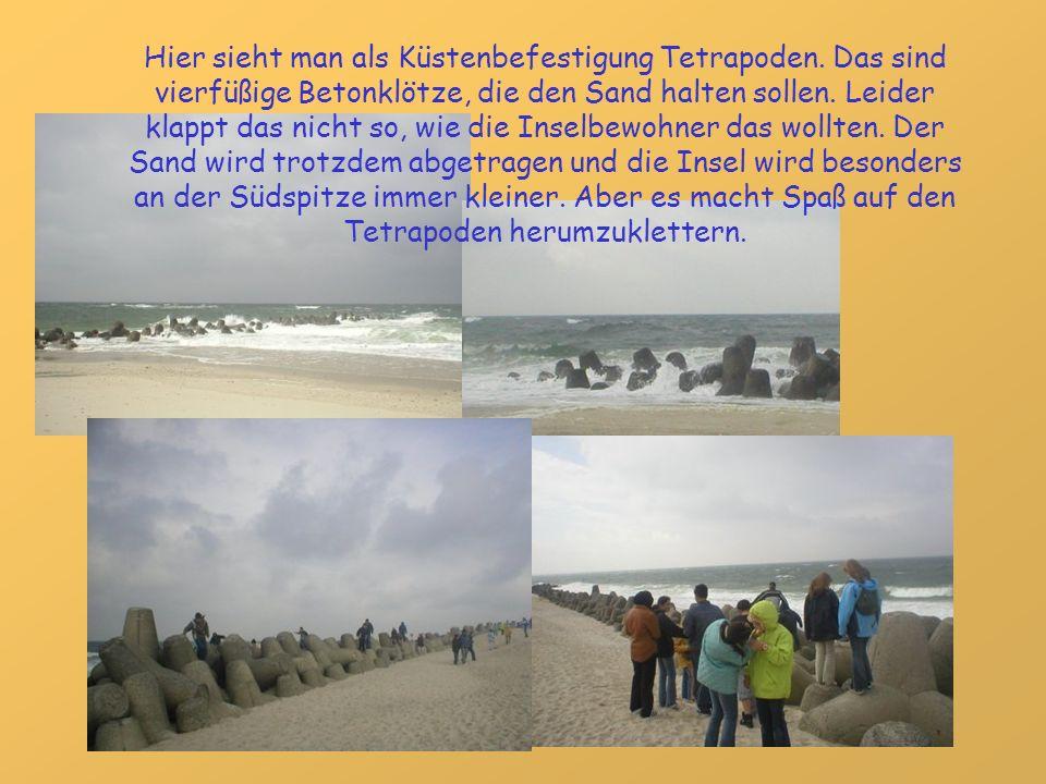 Hier sieht man als Küstenbefestigung Tetrapoden. Das sind vierfüßige Betonklötze, die den Sand halten sollen. Leider klappt das nicht so, wie die Inse