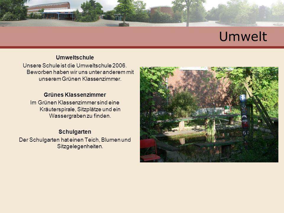 Umwelt Umweltschule Unsere Schule ist die Umweltschule 2006. Beworben haben wir uns unter anderem mit unserem Grünen Klassenzimmer. Grünes Klassenzimm