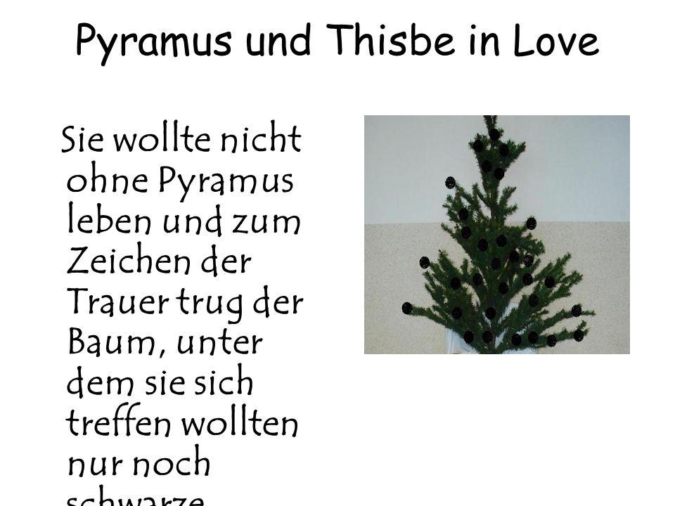 Pyramus und Thisbe in Love Sie wollte nicht ohne Pyramus leben und zum Zeichen der Trauer trug der Baum, unter dem sie sich treffen wollten nur noch s