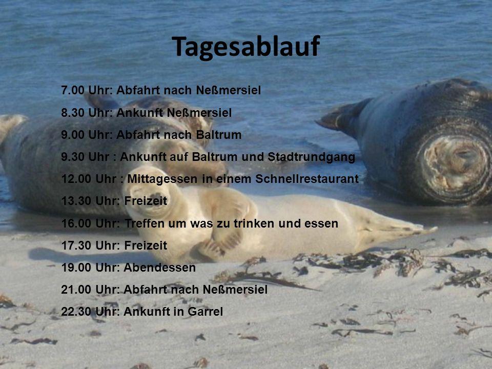 Tagesablauf 7.00 Uhr: Abfahrt nach Neßmersiel 8.30 Uhr: Ankunft Neßmersiel 9.00 Uhr: Abfahrt nach Baltrum 9.30 Uhr : Ankunft auf Baltrum und Stadtrund