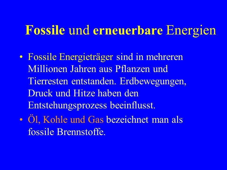 Fossile und erneuerbare Energien Fossile Energieträger sind in mehreren Millionen Jahren aus Pflanzen und Tierresten entstanden.
