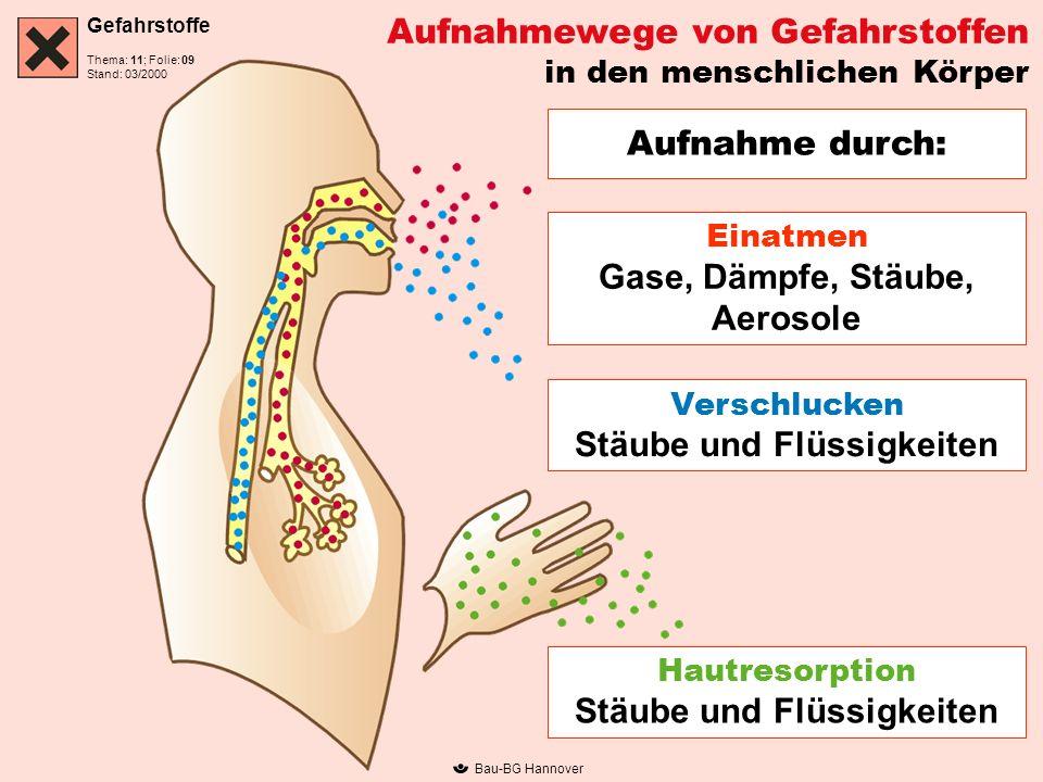 Gefahrstoffe Thema: 11; Folie: Stand: 03/2000 Bau-BG Hannover Aufnahmewege von Gefahrstoffen in den menschlichen Körper Aufnahme durch: Einatmen Gase,