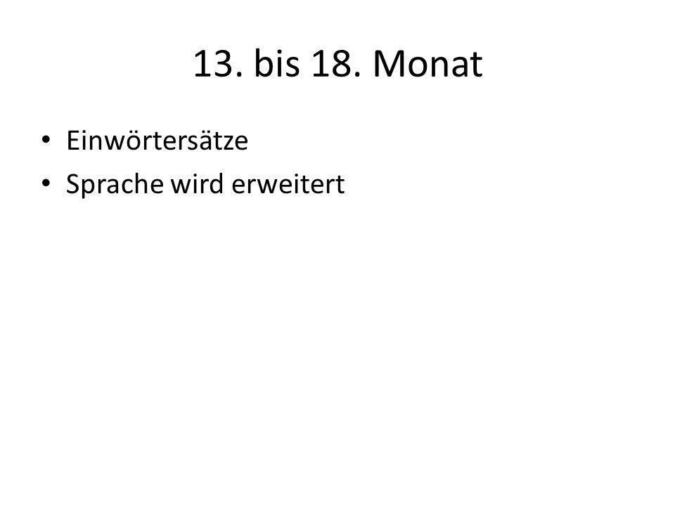 13. bis 18. Monat Einwörtersätze Sprache wird erweitert