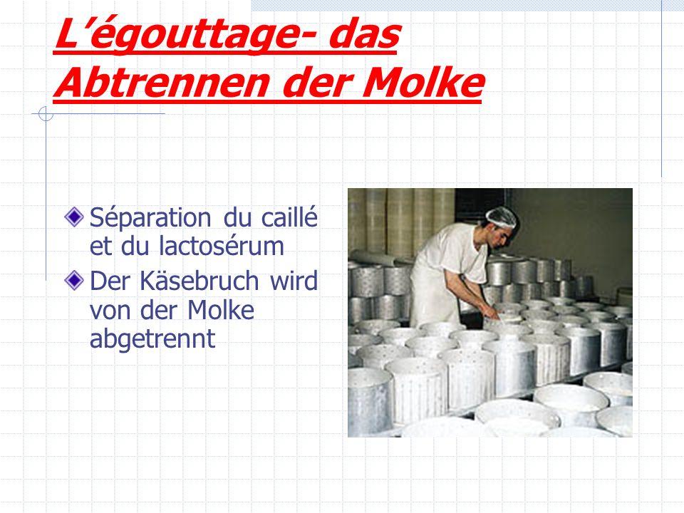 Légouttage- das Abtrennen der Molke Séparation du caillé et du lactosérum Der Käsebruch wird von der Molke abgetrennt