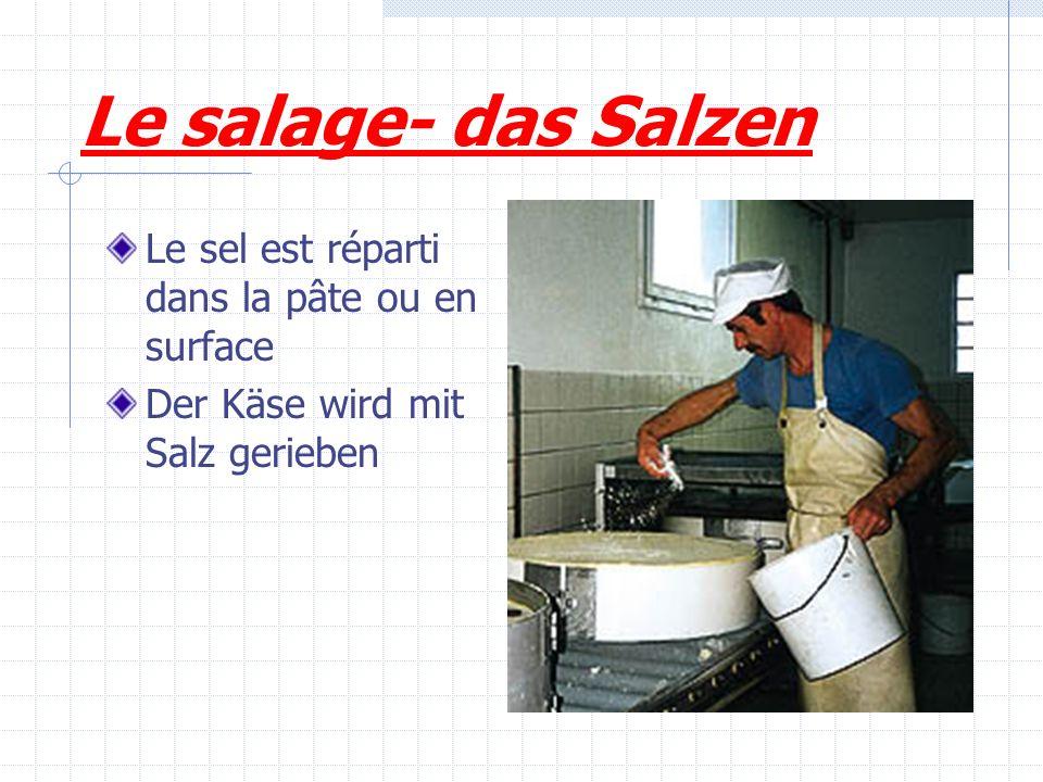 Le salage- das Salzen Le sel est réparti dans la pâte ou en surface Der Käse wird mit Salz gerieben