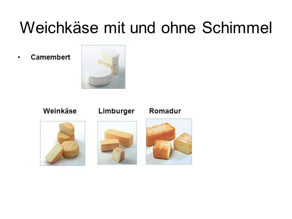 Weichkäse mit und ohne Schimmel Camembert LimburgerRomadurWeinkäse