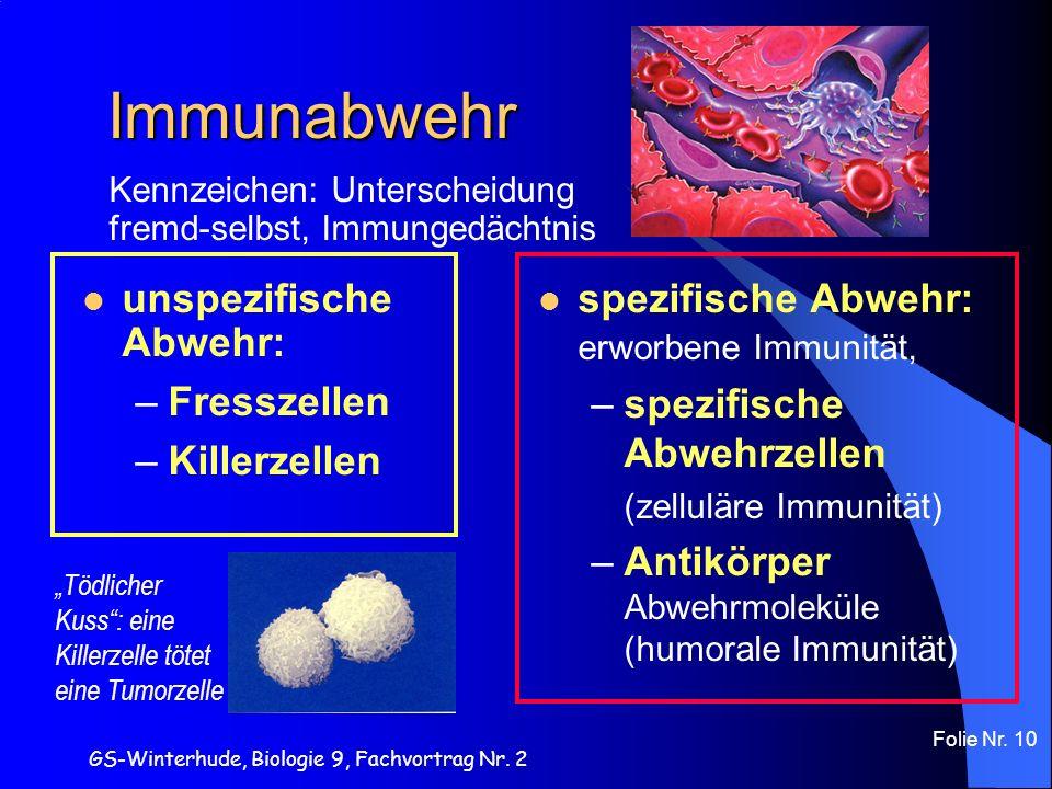 GS-Winterhude, Biologie 9, Fachvortrag Nr. 2 Folie Nr. 10 Kennzeichen: Unterscheidung fremd-selbst, Immungedächtnis Immunabwehr spezifische Abwehr: er