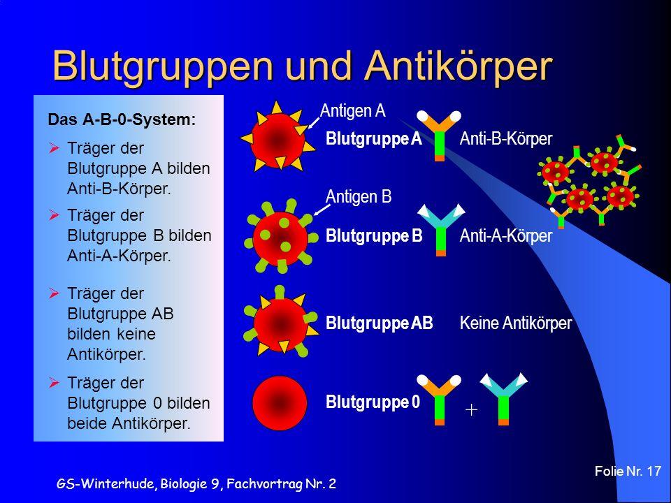 GS-Winterhude, Biologie 9, Fachvortrag Nr. 2 Folie Nr. 17 Blutgruppen und Antikörper Antigen A Anti-B-Körper Blutgruppe A Antigen B Anti-A-Körper Blut