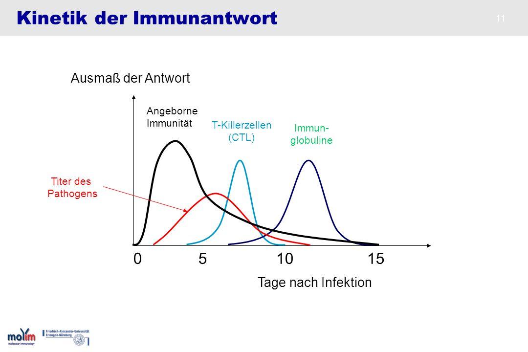 11 Kinetik der Immunantwort Angeborne Immunität Immun- globuline T-Killerzellen (CTL) Titer des Pathogens Tage nach Infektion Ausmaß der Antwort 0 5 1