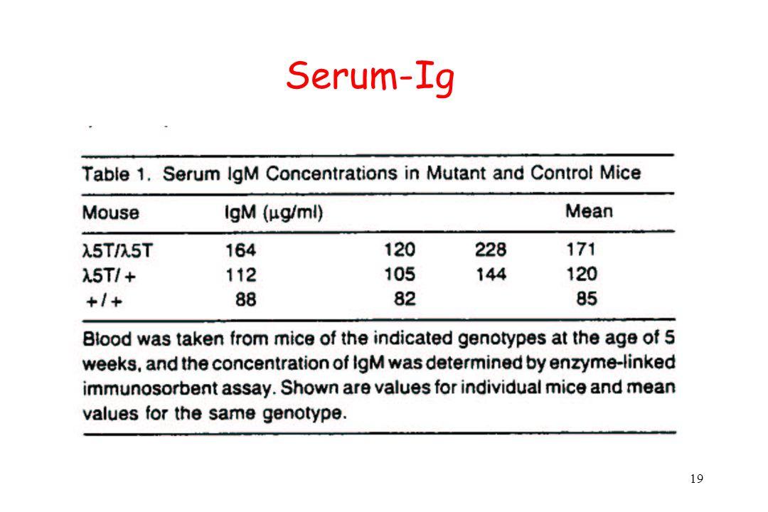 19 Serum-Ig