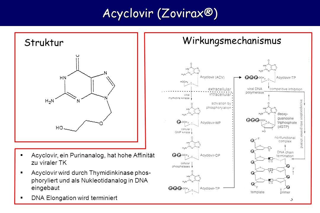 3 Acyclovir (Zovirax®) Acyclovir, ein Purinanalog, hat hohe Affinität zu viraler TK Acyclovir wird durch Thymidinkinase phos- phoryliert und als Nukle