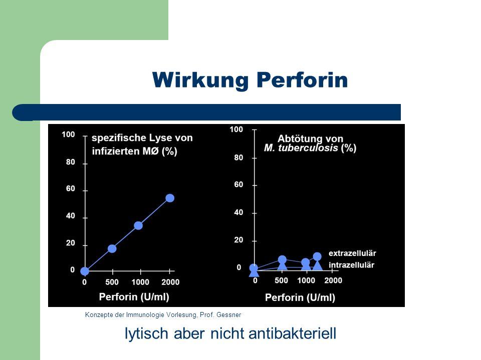 Wirkung Perforin lytisch aber nicht antibakteriell Konzepte der Immunologie Vorlesung, Prof. Gessner