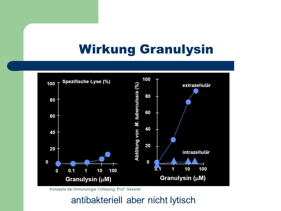 Wirkung Granulysin antibakteriell aber nicht lytisch Konzepte der Immunologie Vorlesung, Prof. Gessner