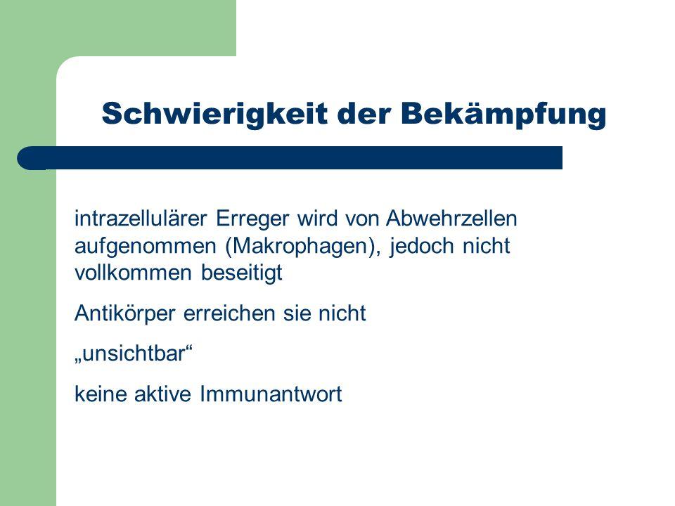 Schwierigkeit der Bekämpfung intrazellulärer Erreger wird von Abwehrzellen aufgenommen (Makrophagen), jedoch nicht vollkommen beseitigt Antikörper err