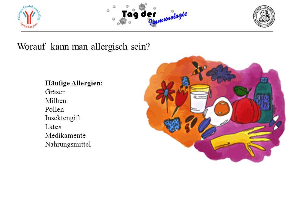 Tag der Immunologie Häufige Allergien: Gräser Milben Pollen Insektengift Latex Medikamente Nahrungsmittel Worauf kann man allergisch sein?