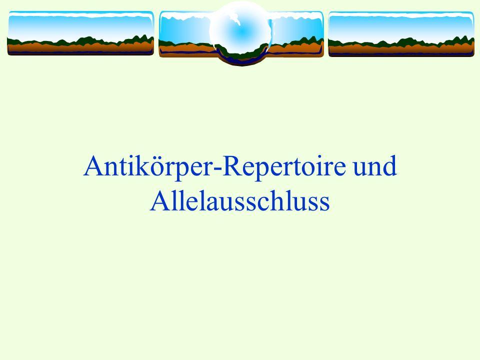 Antikörperrepertoire Definition: Antikörperrepertoire (Immunglobulinrepertoire) ist die vollständige Sammlung von Antikörperspezifitäten in einem Individuum Limitiert wird die Antikörperspezifität durch die Anzahl an B-Zellen und durch den Kontakt mit Antigenen