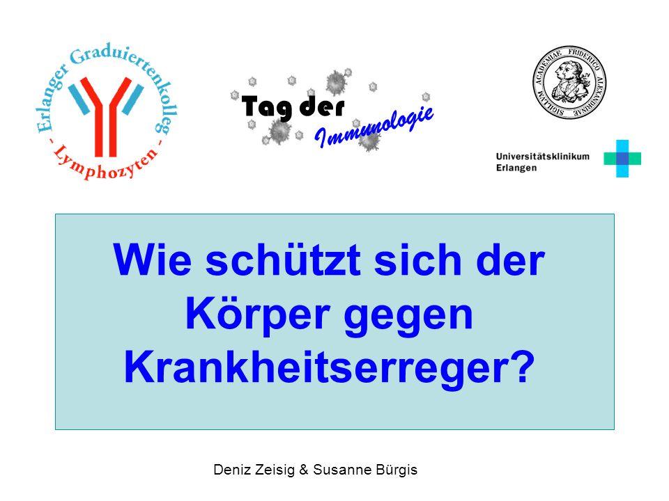 Wie schützt sich der Körper gegen Krankheitserreger? Tag der Immunologie Deniz Zeisig & Susanne Bürgis
