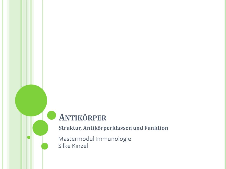 A NTIKÖRPER Struktur, Antikörperklassen und Funktion Silke Kinzel Mastermodul Immunologie Silke Kinzel