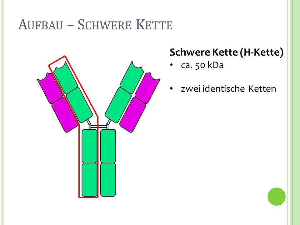 Schwere Kette (H-Kette) ca.