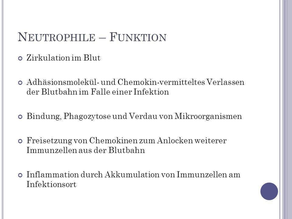 Zirkulation im Blut Adhäsionsmolekül- und Chemokin-vermitteltes Verlassen der Blutbahn im Falle einer Infektion Bindung, Phagozytose und Verdau von Mi
