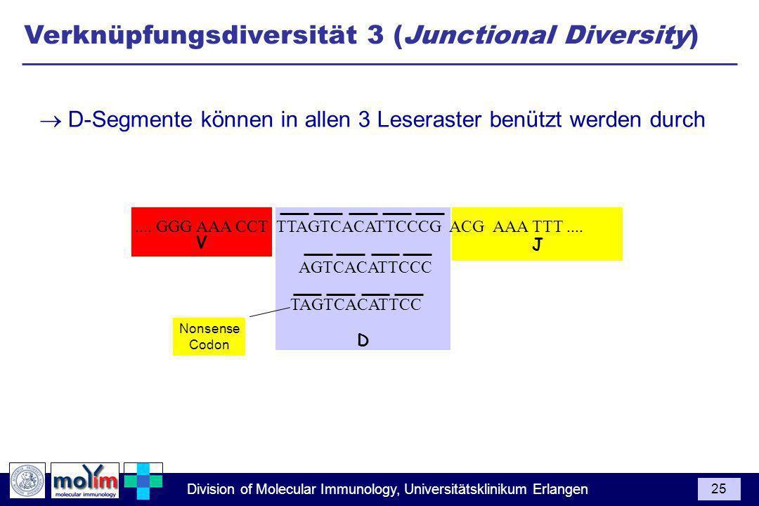 Division of Molecular Immunology, Universitätsklinikum Erlangen 25 J D V.... GGG AAA CCT TTAGTCACATTCCCG ACG AAA TTT.... AGTCACATTCCC TAGTCACATTCC Non